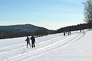 Langlauf in Sankt Englmar Bayerischer Wald Bayern